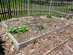 Getting the soil chemistry right is key for growing healthful produce at home