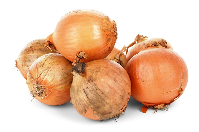 onions can control slugs which helps soil chemistry