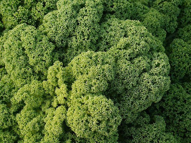 Doesn't superfood kale look delicious?