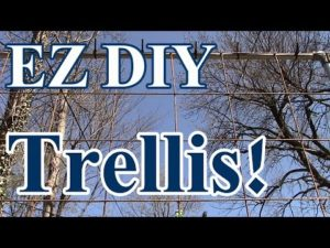 Easy Vertical Grow Trellis Tips for Your Home Garden