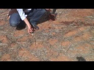 How to test soil structure