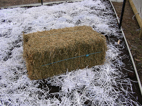 how to grow a garden in hay bales