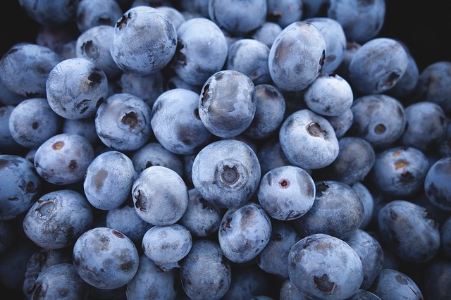 Blueberries are a great food for beginning superfood consumption